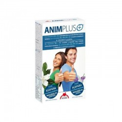 Intersa animplus